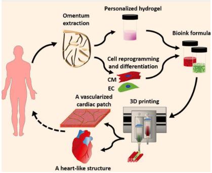 研究人员通过细胞来创建3D打印的心脏