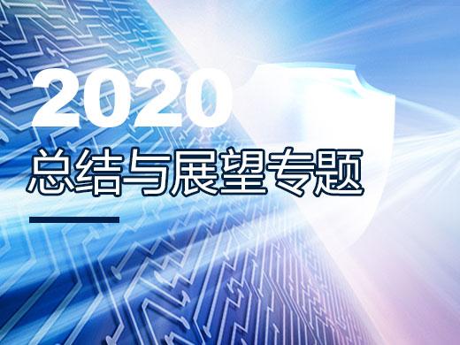 2020年度总结与展望
